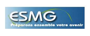 Logo de Ecole supérieure de management et de gestion - Strasbourg