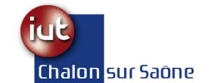 Logo de Institut universitaire de technologie de Chalon sur Saône, Université de Bourgogne
